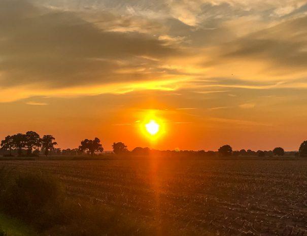 Thorandhof-Abendsonne.jpg